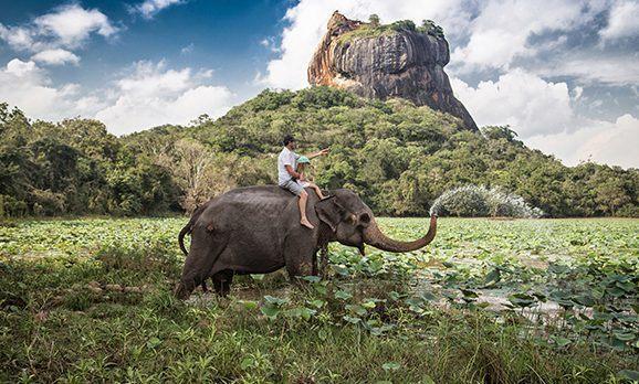 Mann reitet mit Kind auf einem wasserspeienden Elefant durch ein Feuchtgebiet in Sri Lanka