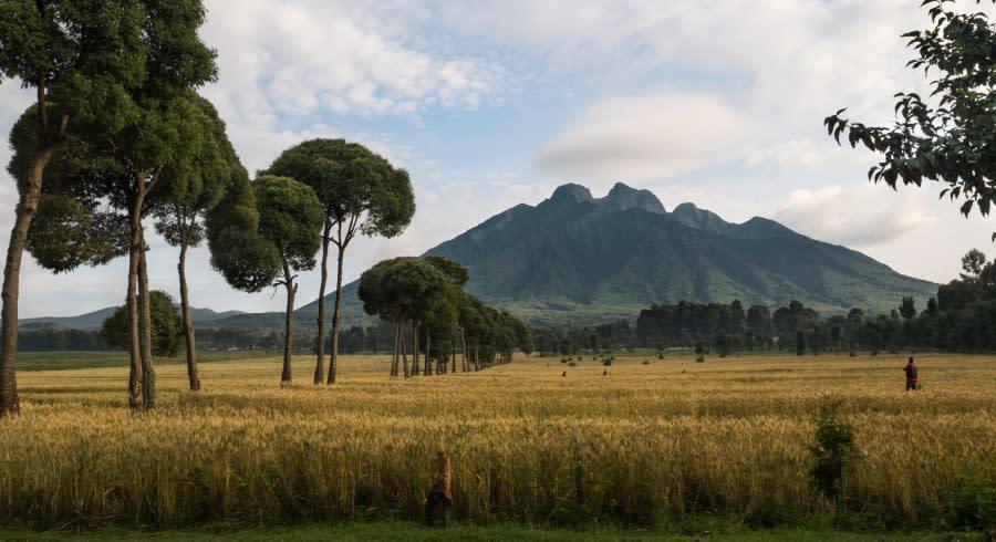 Beautiful scenery in Rwanda