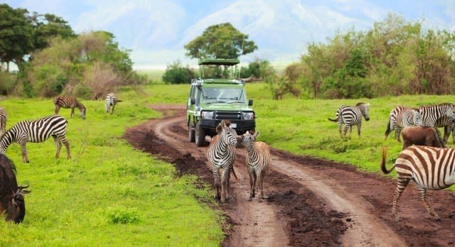 Touristen auf Pirschfahrt beobachten Zebras bei der Tierwanderung
