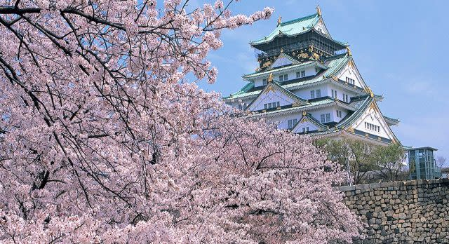 Osaka Castle im Frühling