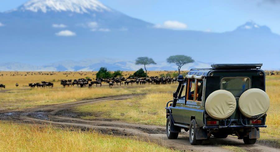 Safari Fahrtin Tansania