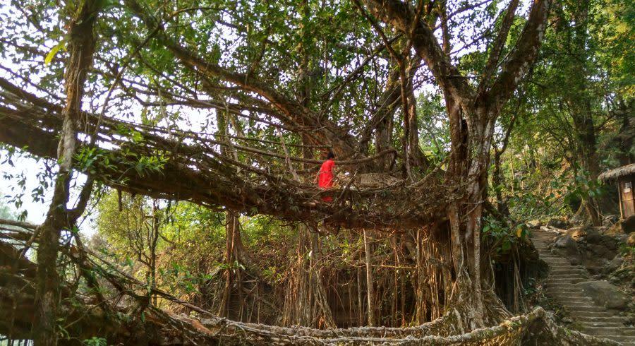 Brücke in Cherrapunji