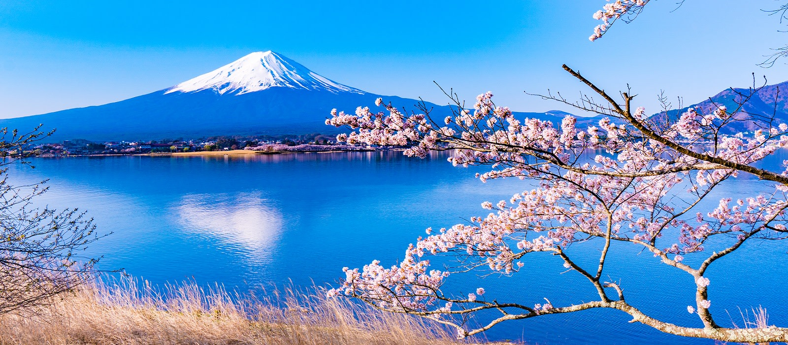 Kyushu Tour Package Custom Japan Trip Enchanting Travels