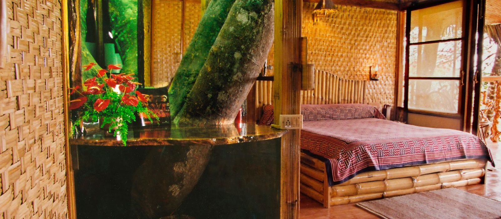 Hotel Tranquil South India