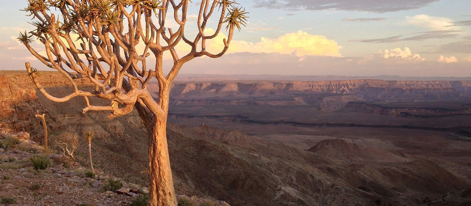 Classic Namibia Luxury Itinerary – 44623 Tour Trip 3