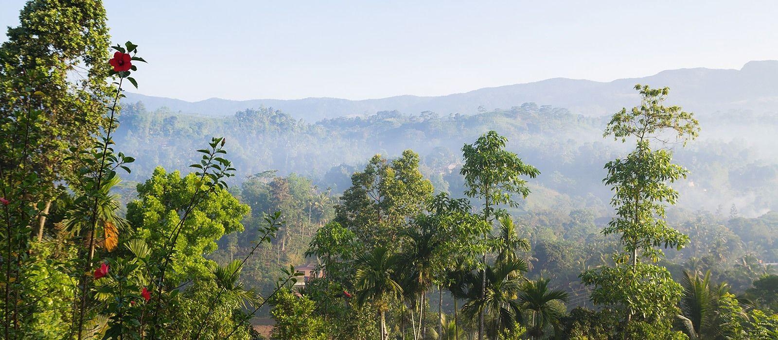 Bezauberndes Sri Lanka – Tempel, Teeplantagen und Traumstrände Urlaub 3