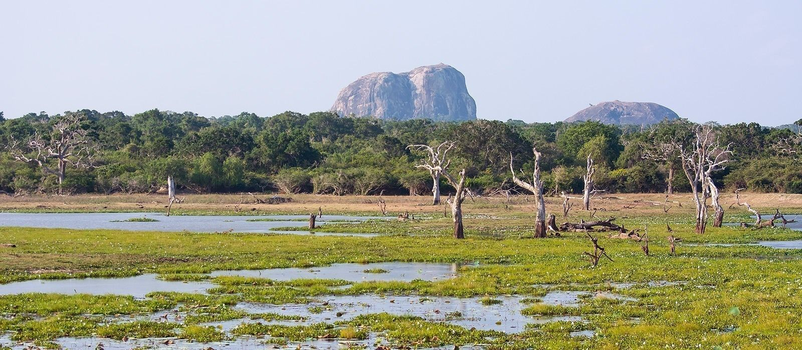 Reiseziel Tangalle Sri Lanka