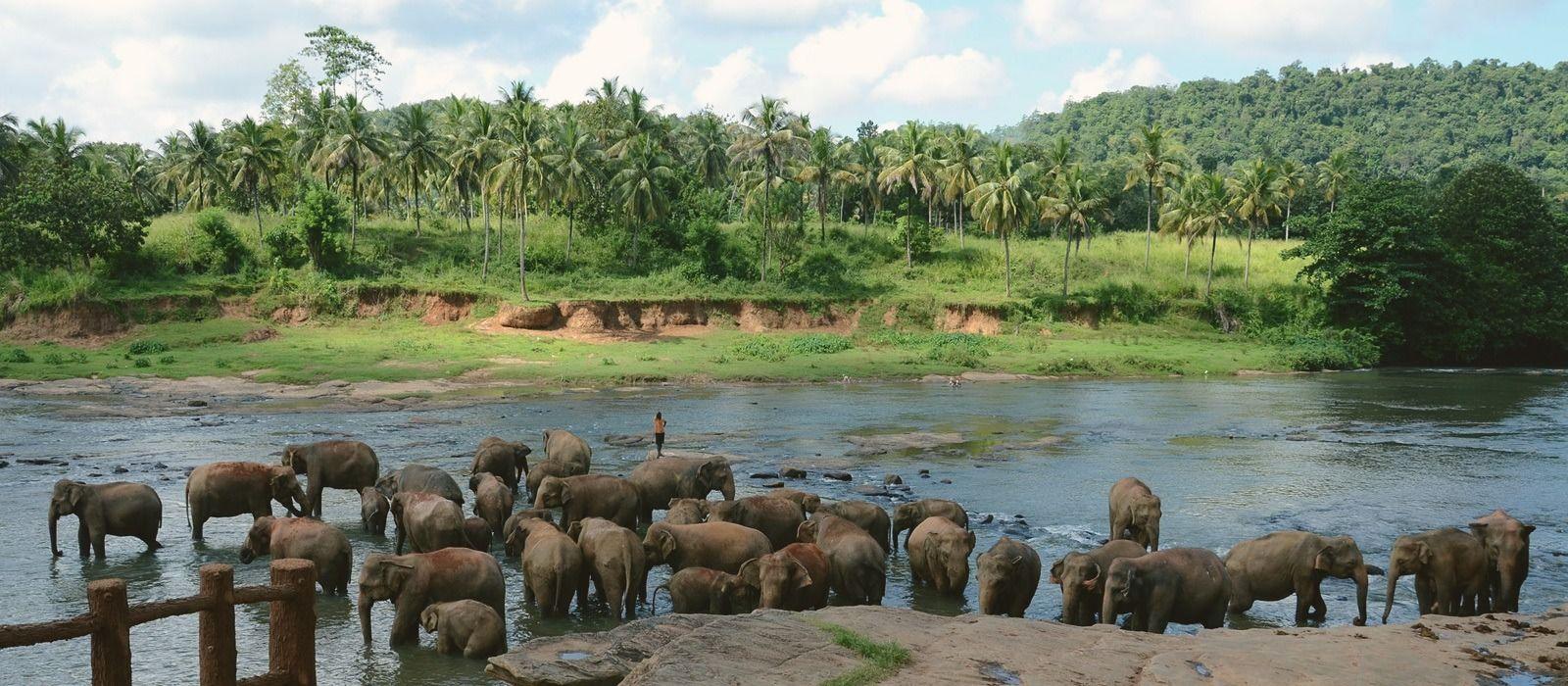 Travel Destination Sri Lanka