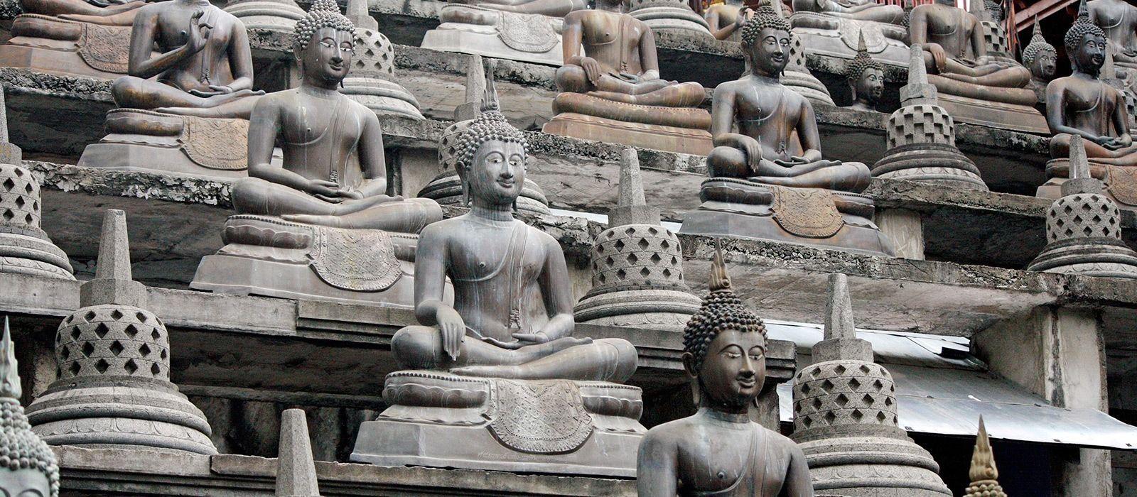 Luxurious Introduction to Sri Lanka Tour Trip 3