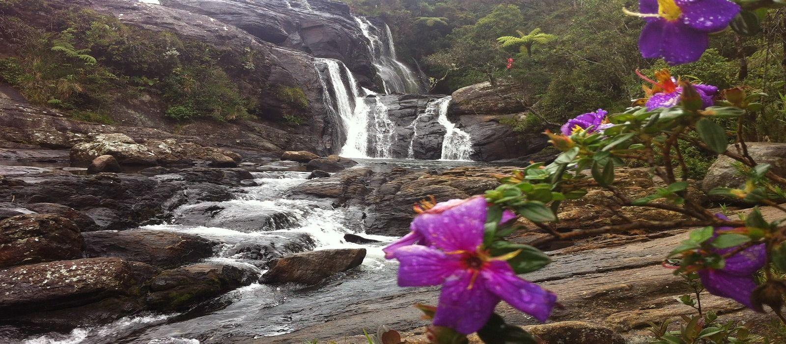 Destination Nuwara Eliya Sri Lanka