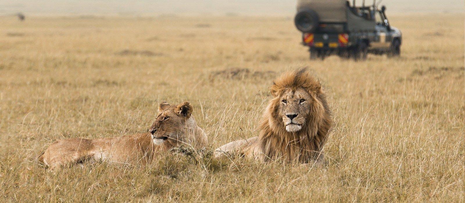 Destination Serengeti (Central) Tanzania