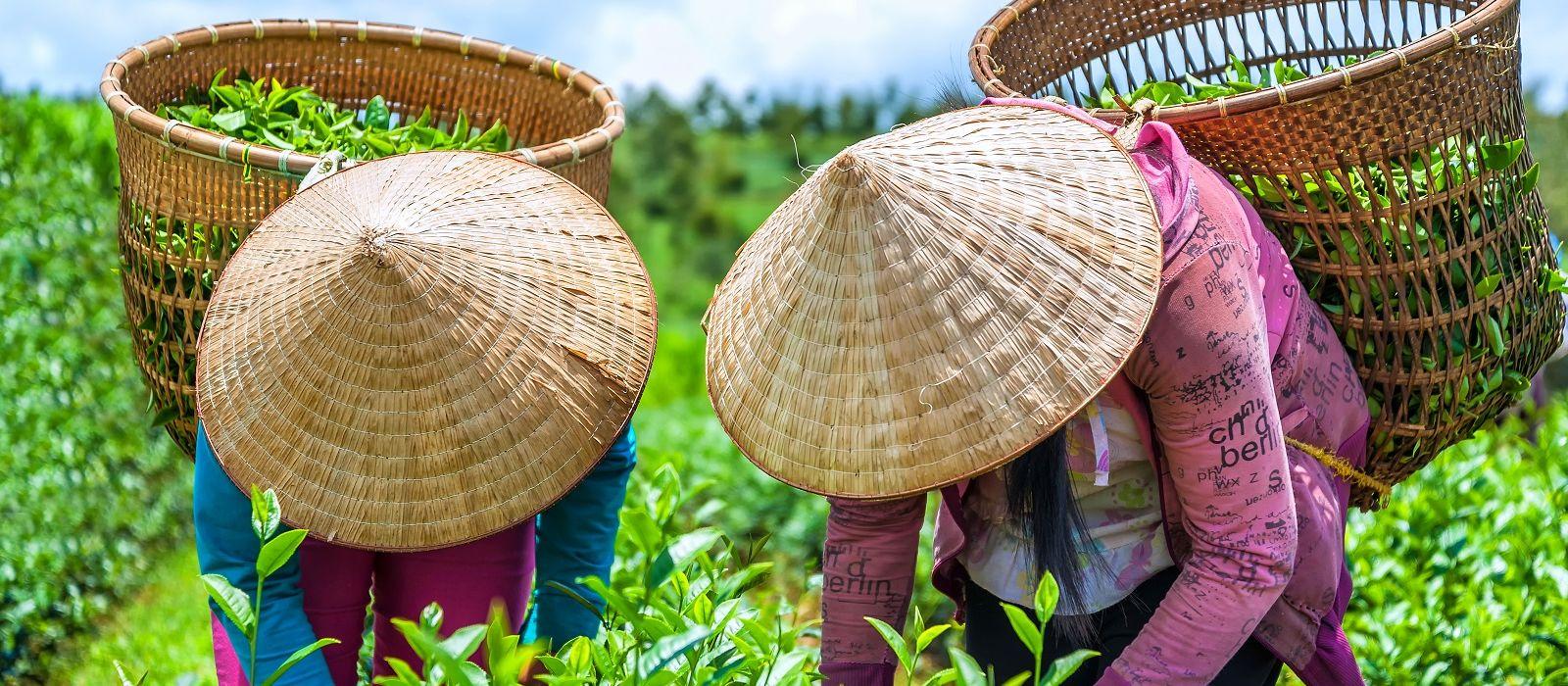 Vividly Yours, Vietnam Tour Trip 7