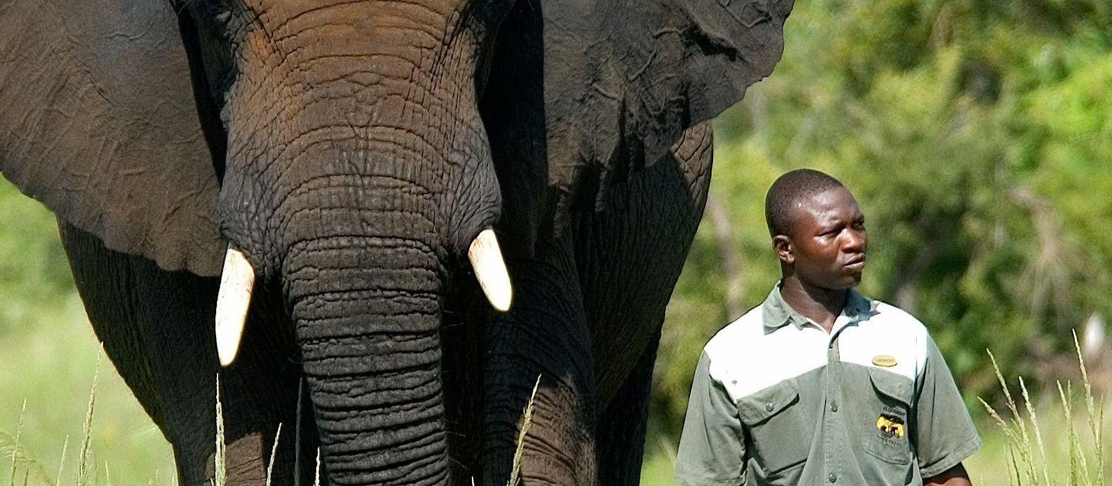 Naturreise in Simbabwe & Botswana: Wasserfälle & Wasserwege Urlaub 6