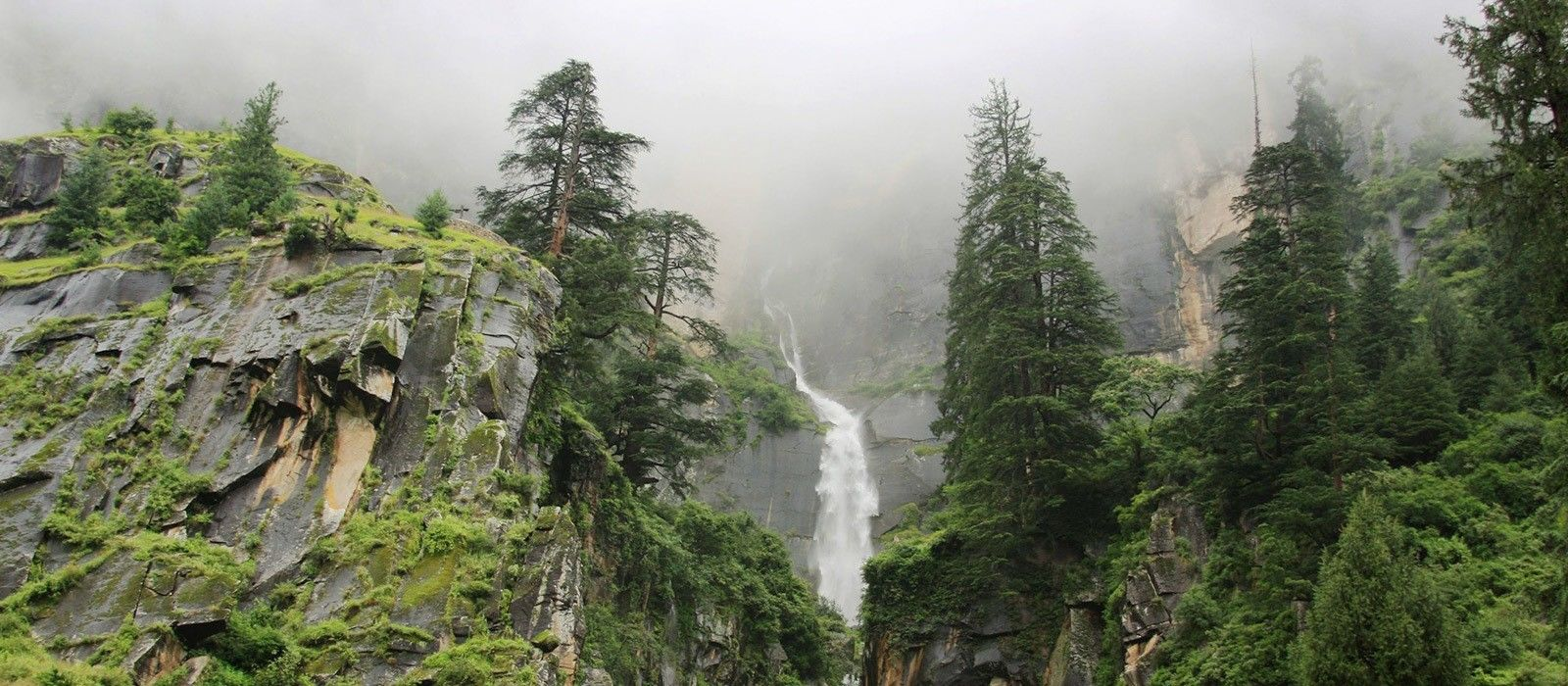 Darjeeling: Teegenuss & Berge Urlaub 5