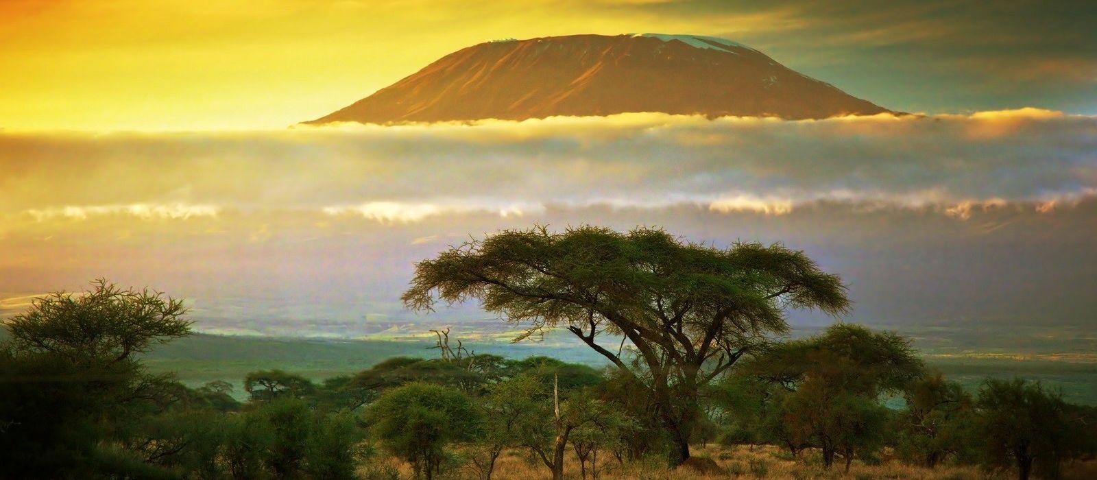 Tansania Luxusreise: Serengeti, Viktoriasee & Big Five Urlaub 5