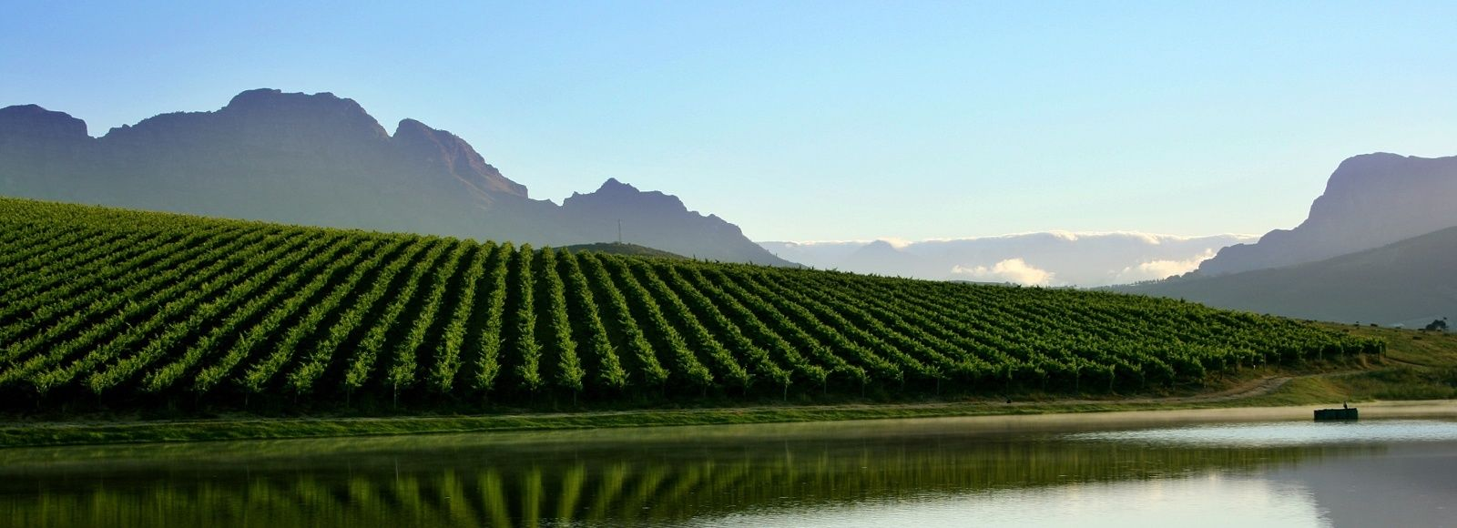 Dine with South Africa's Winemakers​ Tour Trip 1