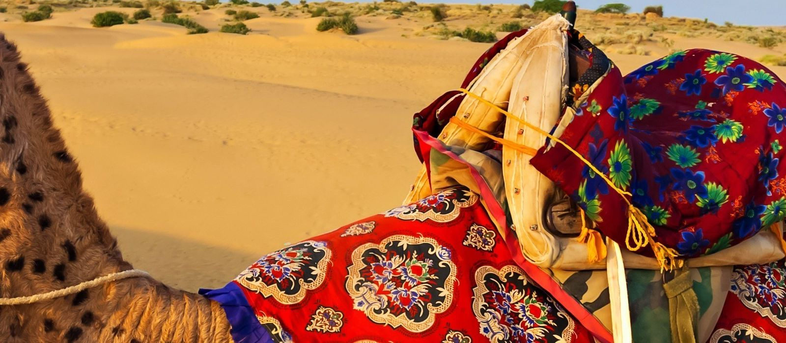 Rajasthan Rundreise: Geheimnisvolle Wüste, Paläste & Seen Urlaub 1