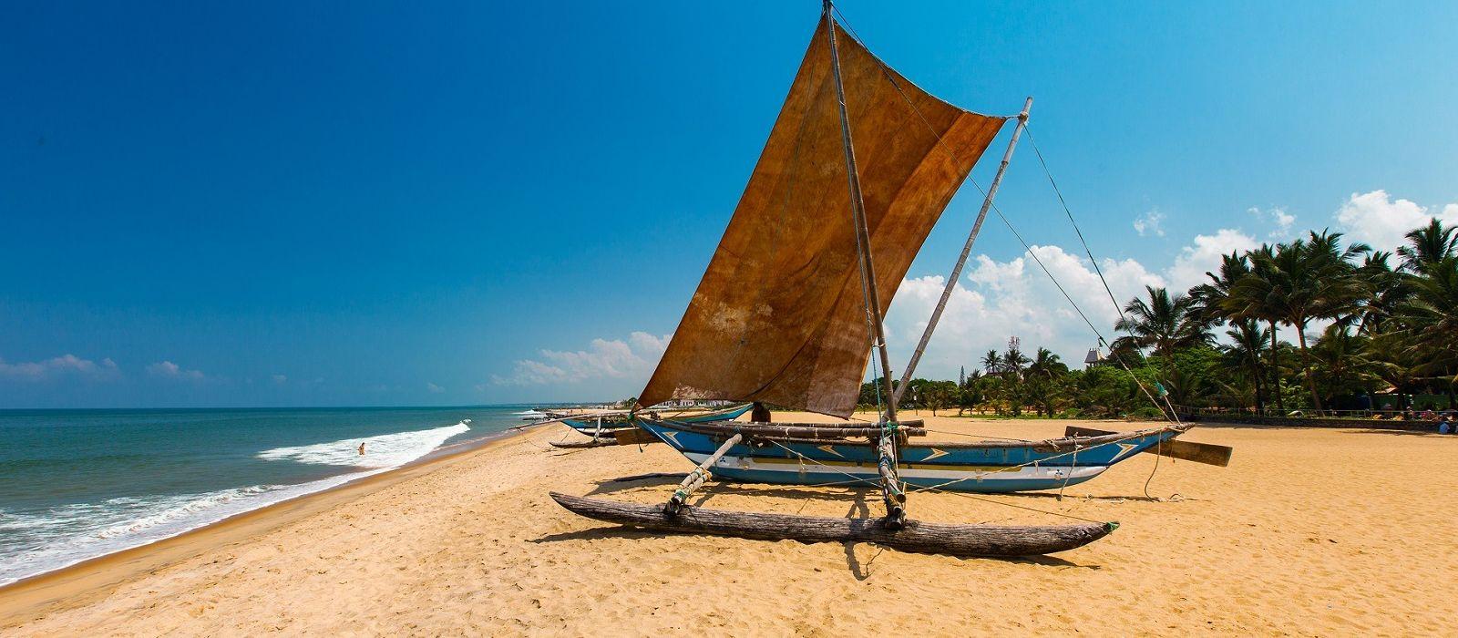 Sri Lanka: Reise zur Heimat des berühmten Ceylon-Tees Urlaub 2