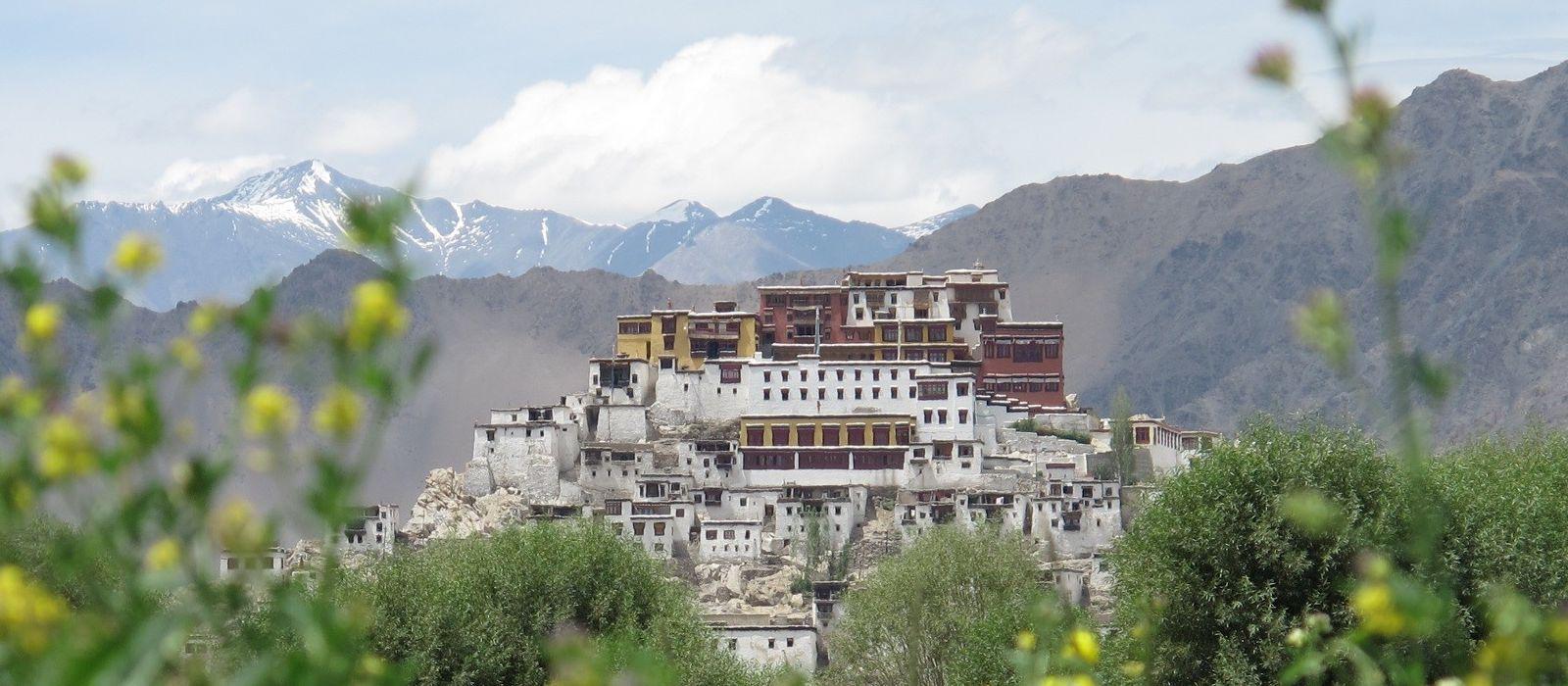 Destination Thiksey Himalayas