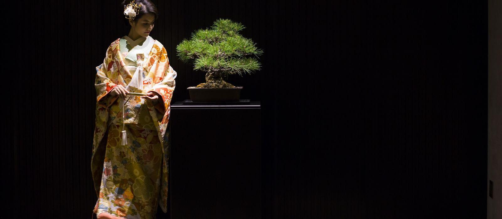 Culture & Heritage in Japan Tour Trip 2