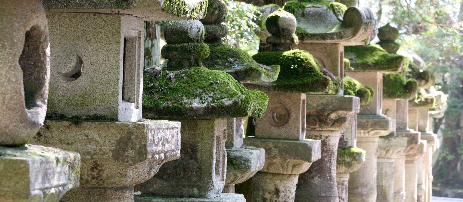 Culture & Heritage in Japan Tour Trip 5