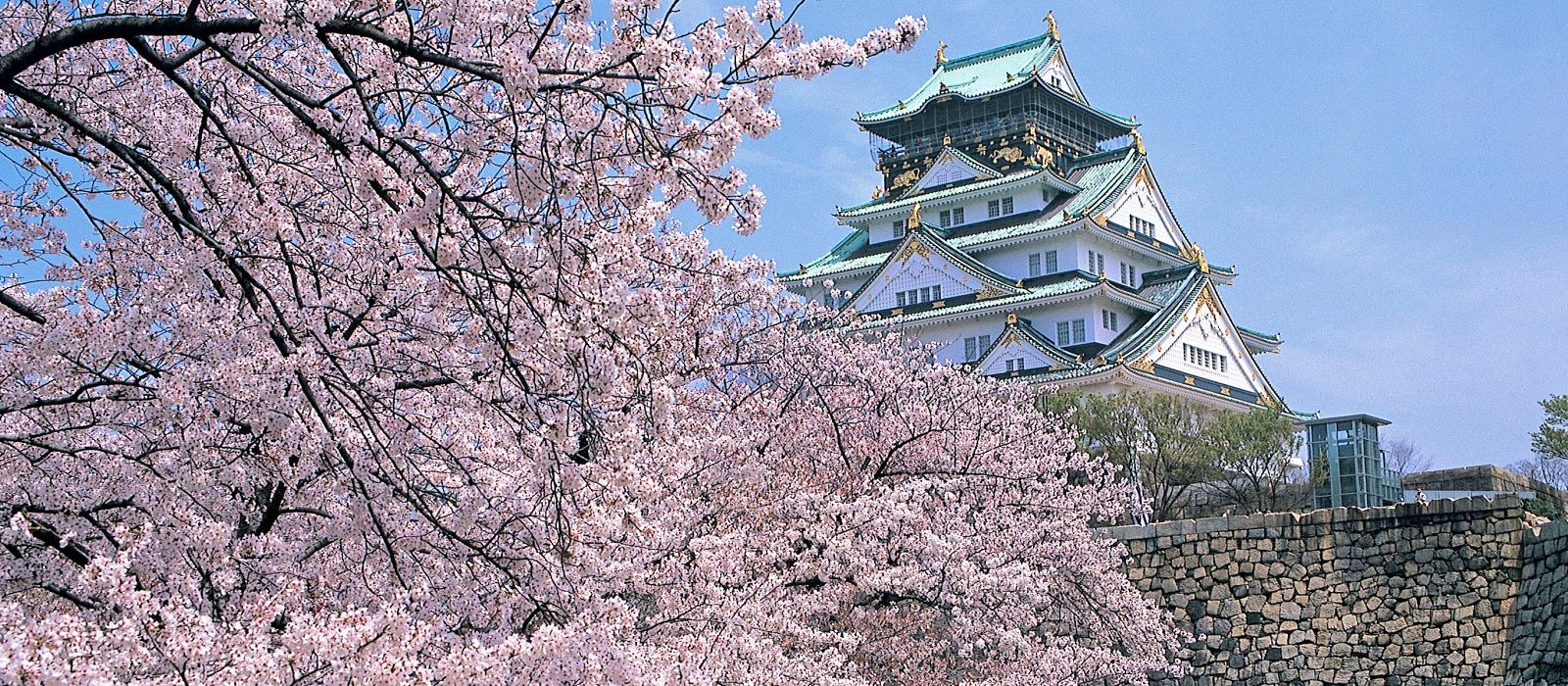 Japan: Pure Luxury Tour Trip 4