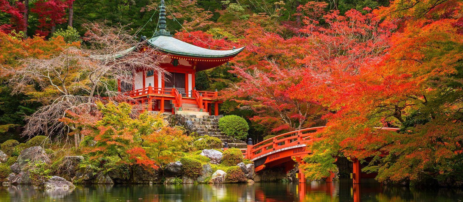 Japan: Pure Luxury Tour Trip 2
