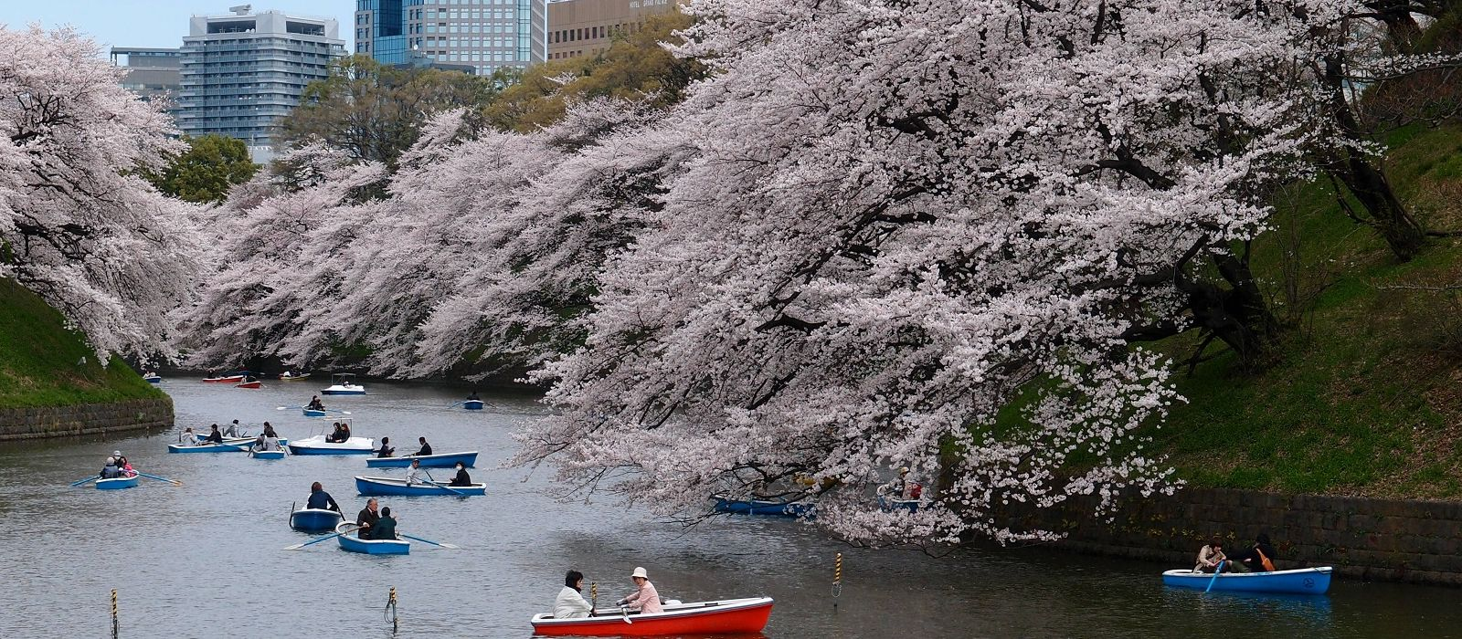 Highlights of Japan Tour Trip 1