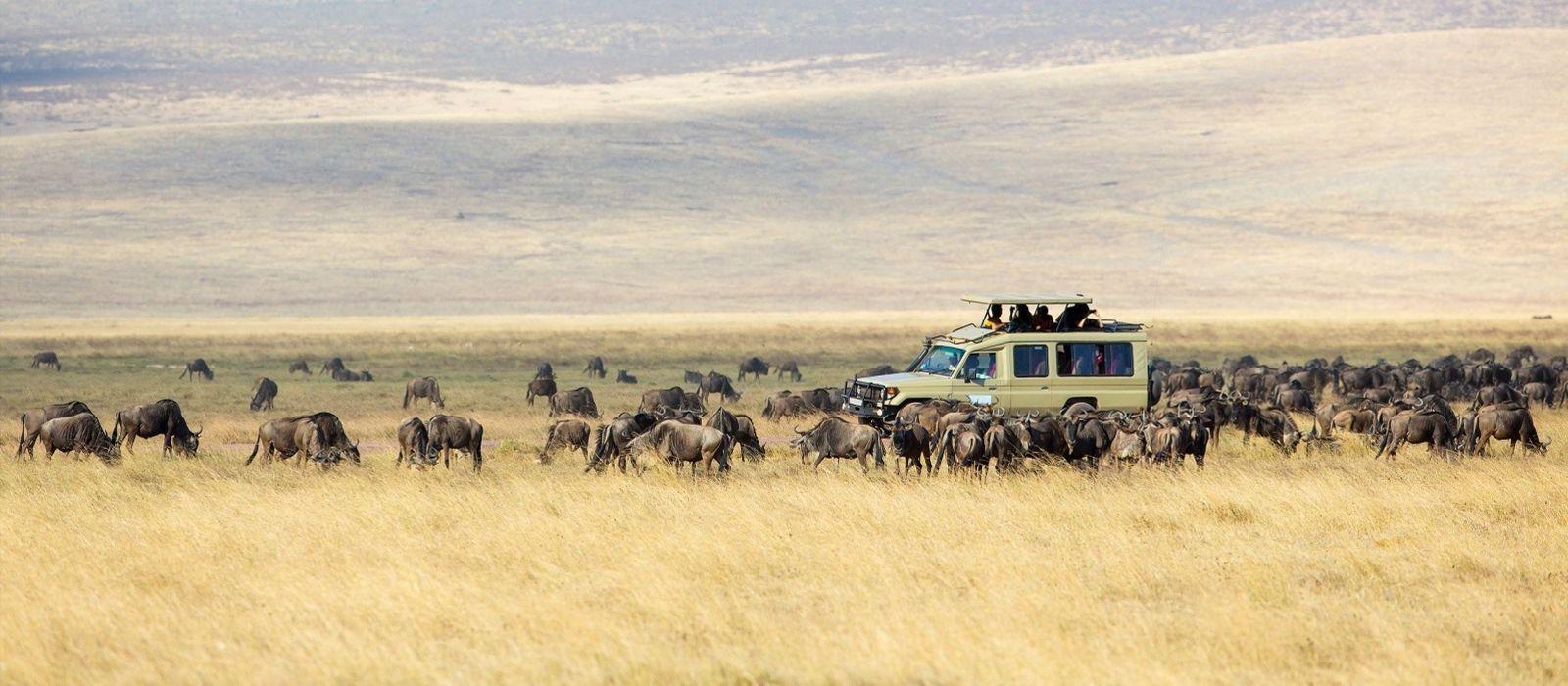 Tansania, Simbabwe & Botswana: Vom Kilimandscharo zu den Viktoriafällen Urlaub 2