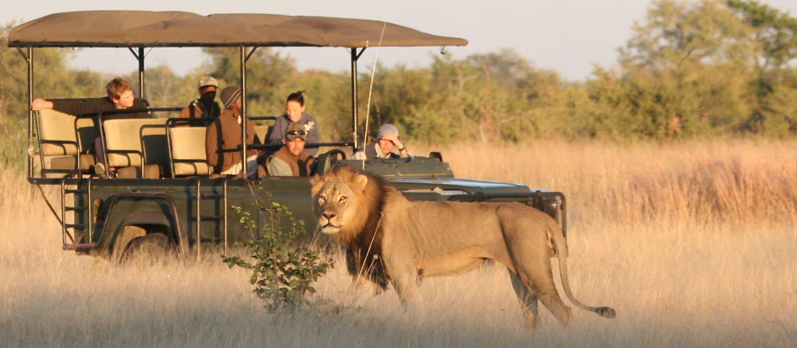 Hotel Camp Hwange Simbabwe