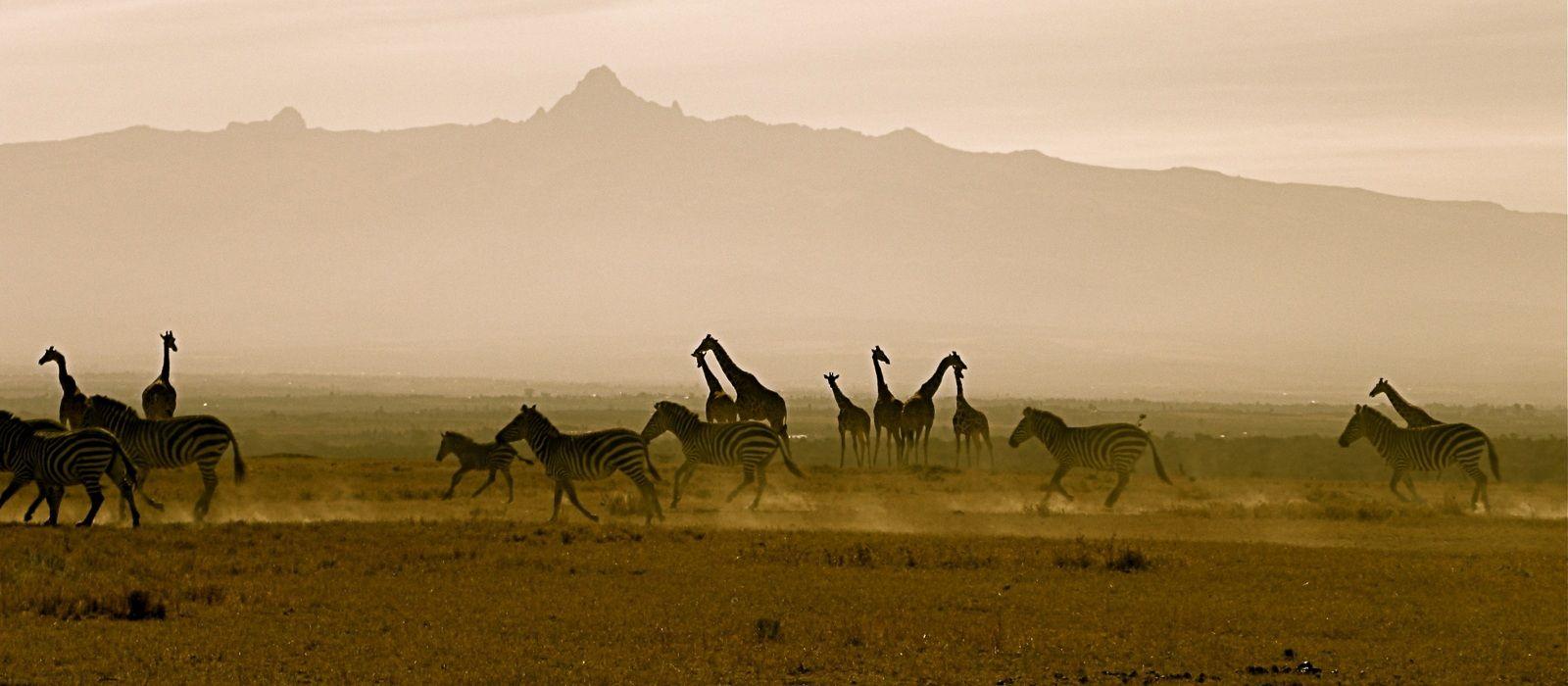 Destination Mt. Kenya Kenya