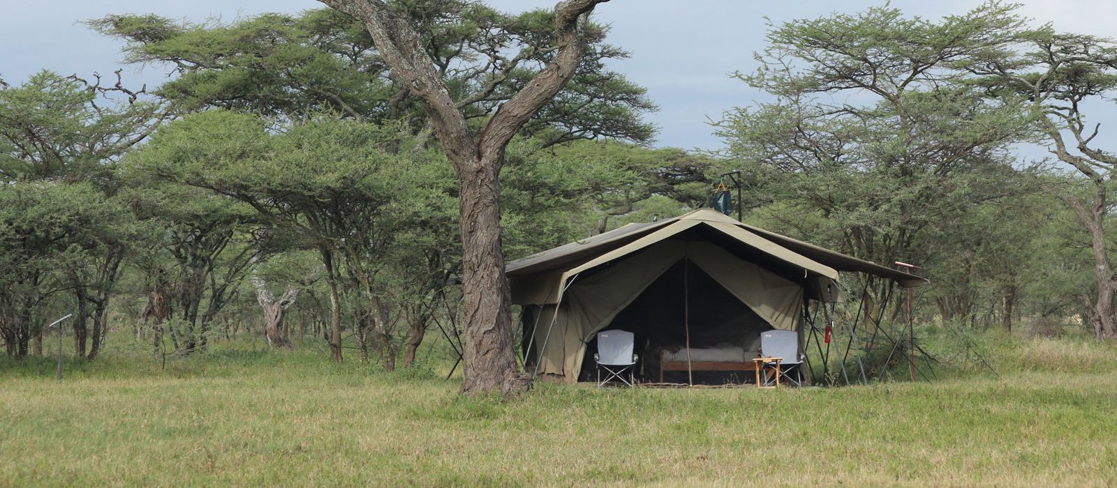 Hotel Ndutu Wilderness Tented Camp Tansania