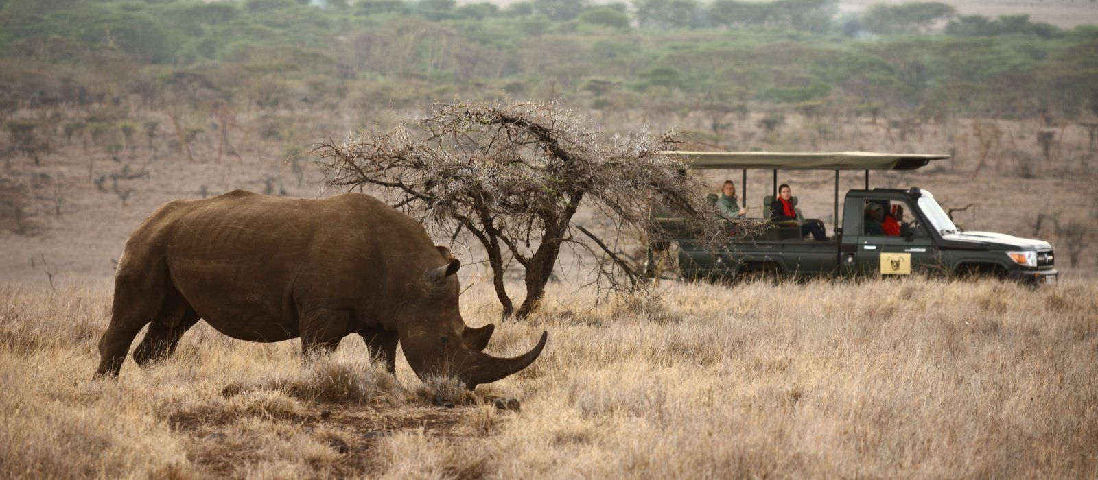 Wildes Kenia – Luxus Safari Reise Urlaub 5