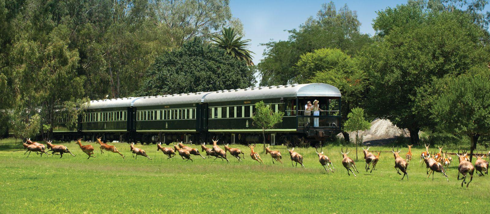 Cape Town, Rovos Luxury & Kruger Tour Trip 1