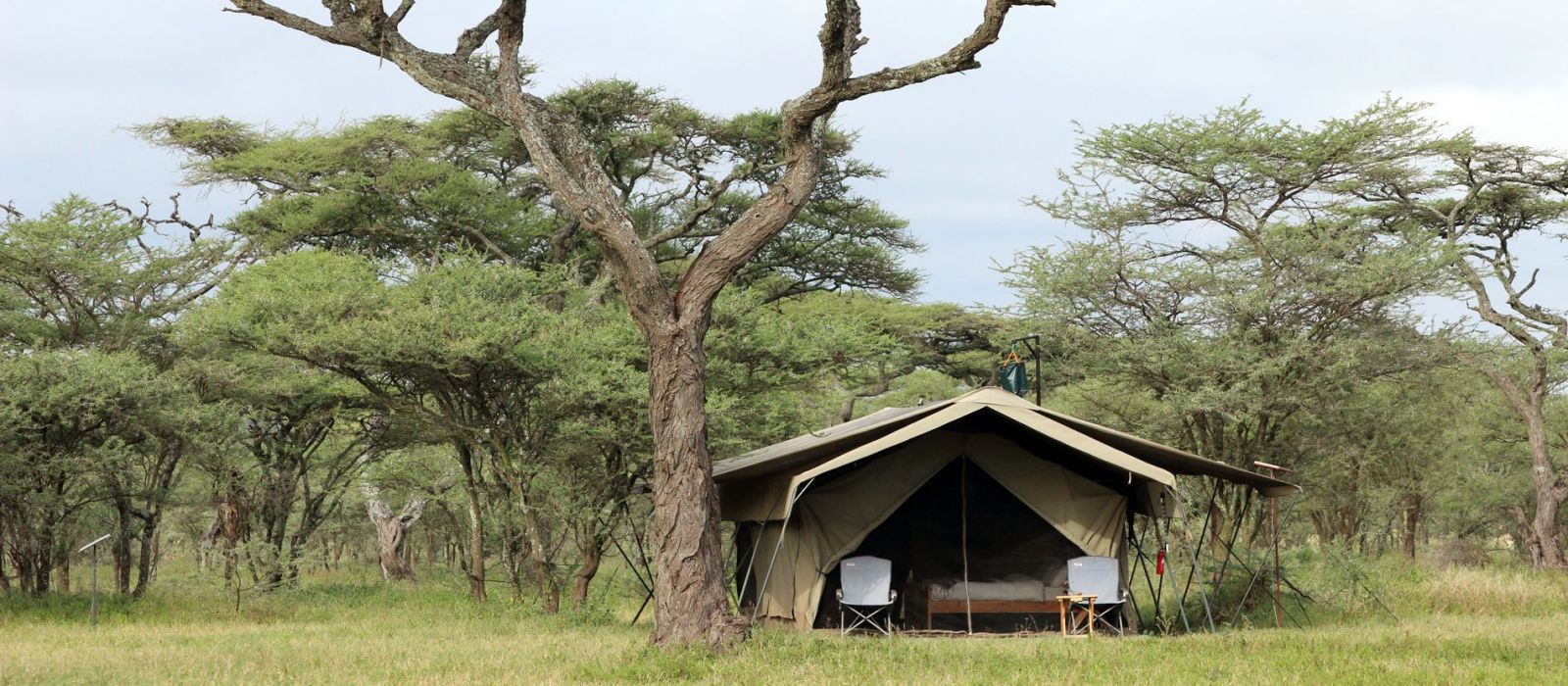 Hotel Serengeti North Wilderness Camp Tanzania
