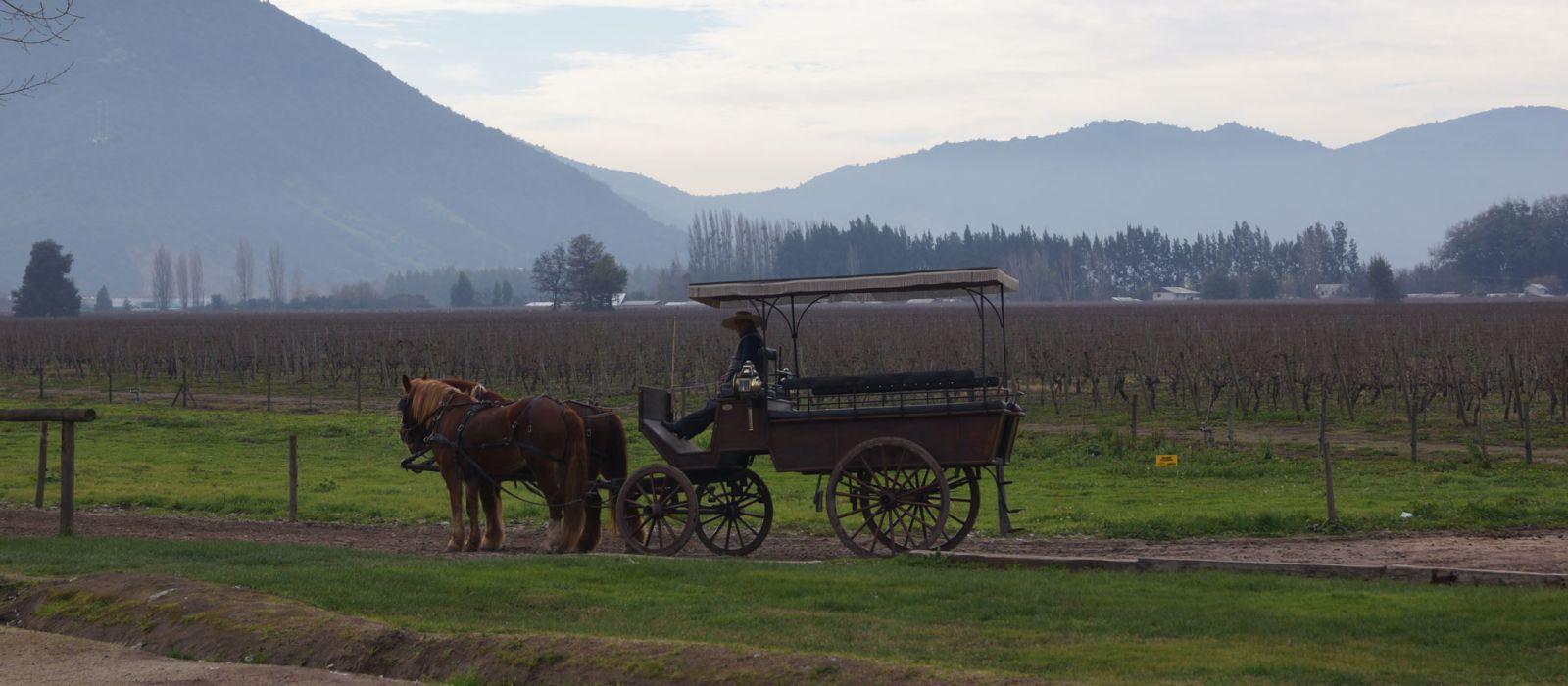 Reiseziel Colchagua Chile
