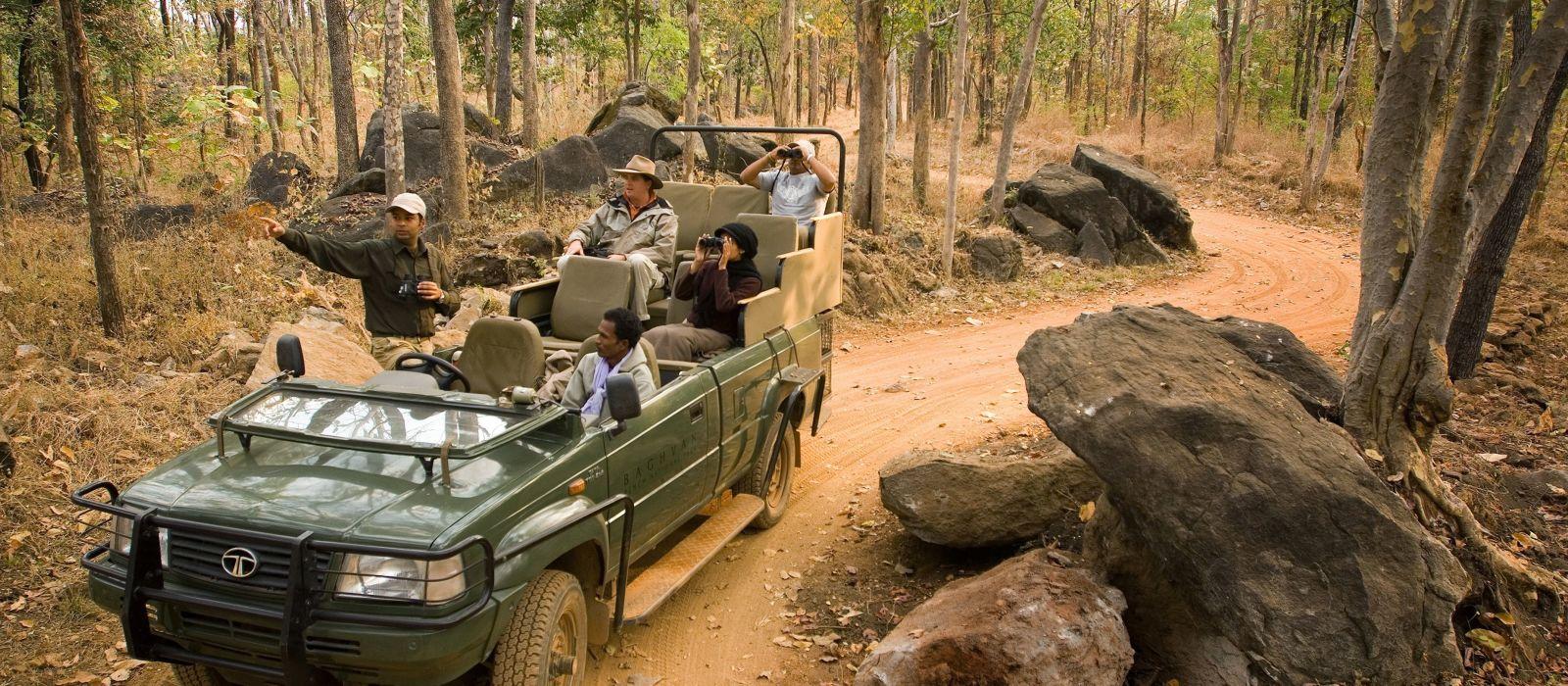 Metropolen & Safaris – Auf Tigers Fährte durch Indien Urlaub 2