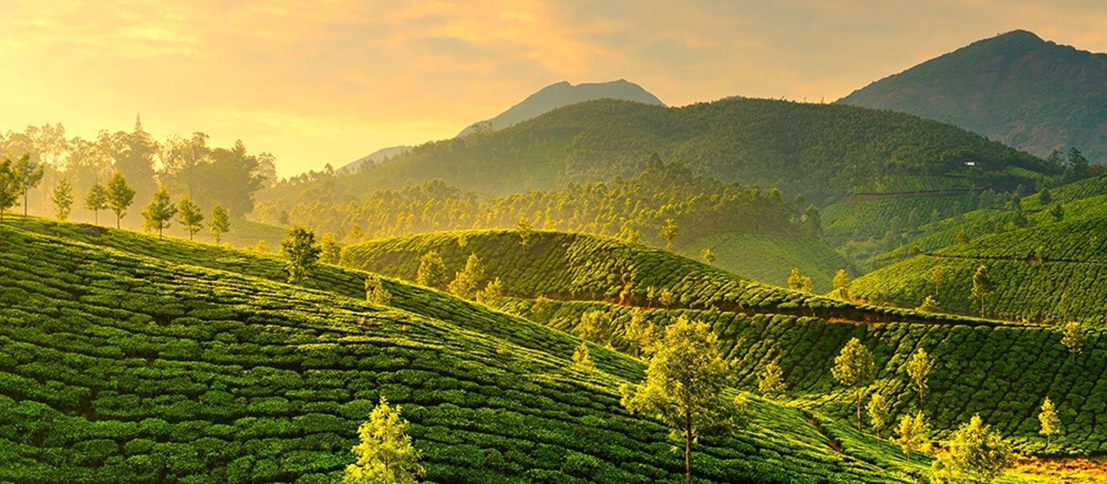 Kerala: Backwater & Plantagen Urlaub 2