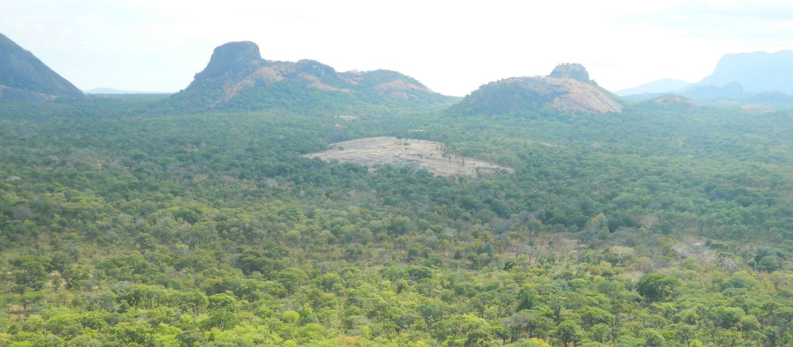 Destination Niassa Game Reserve Mozambique