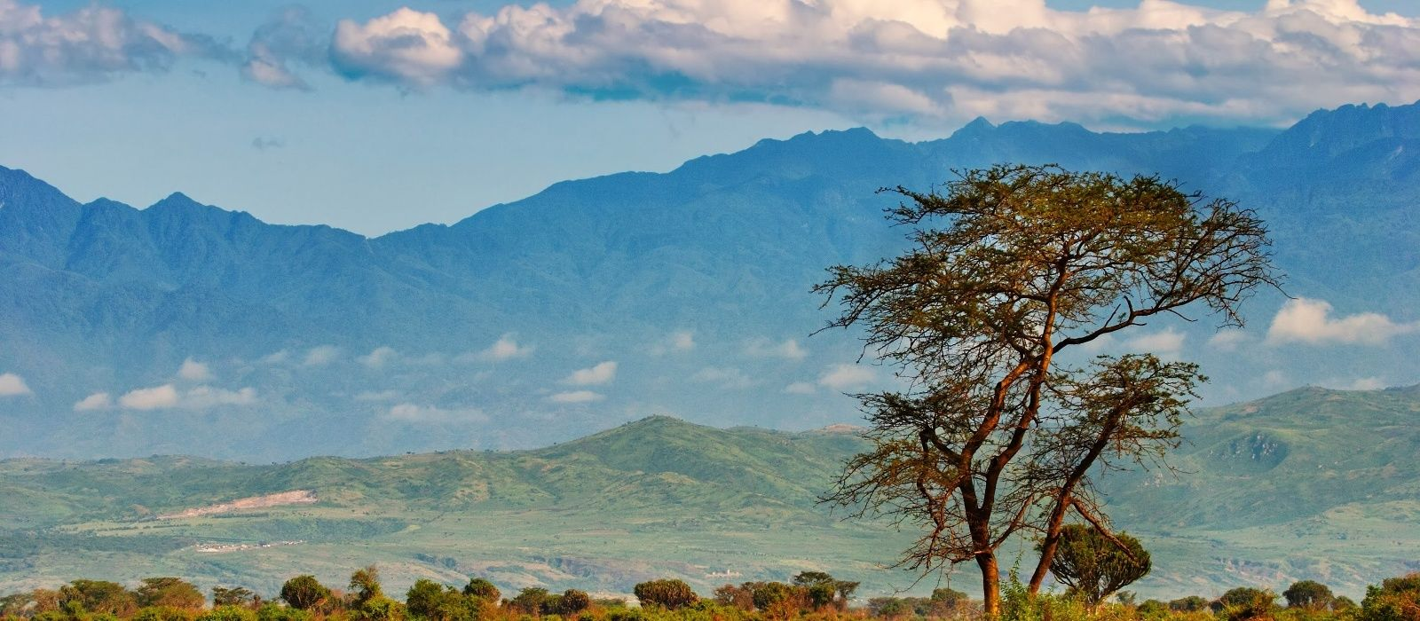 Reiseziel Queen Elisabeth Uganda