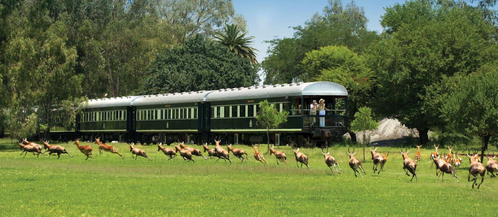 Destination Rovos Rail (Pretoria – Victoria Falls) South Africa