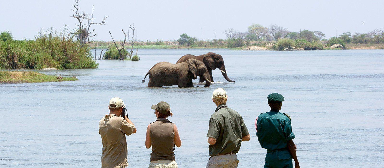 Safari Rundreise – Höhepunkte von Malawi Urlaub 1