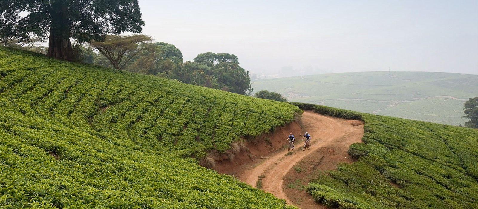 Reiseziel Shire Highlands Malawi