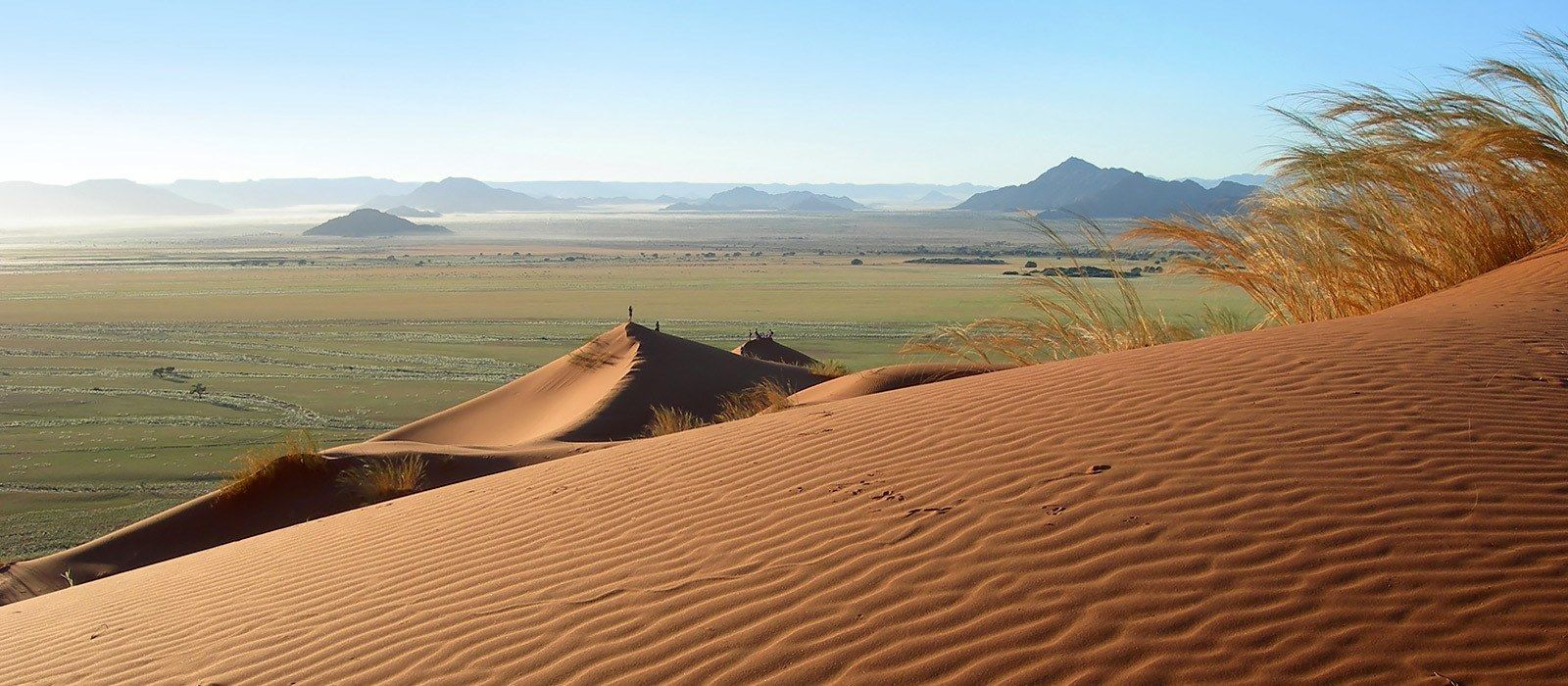 Exclusive Travel Tips for Your Destination Kalahari Desert ...