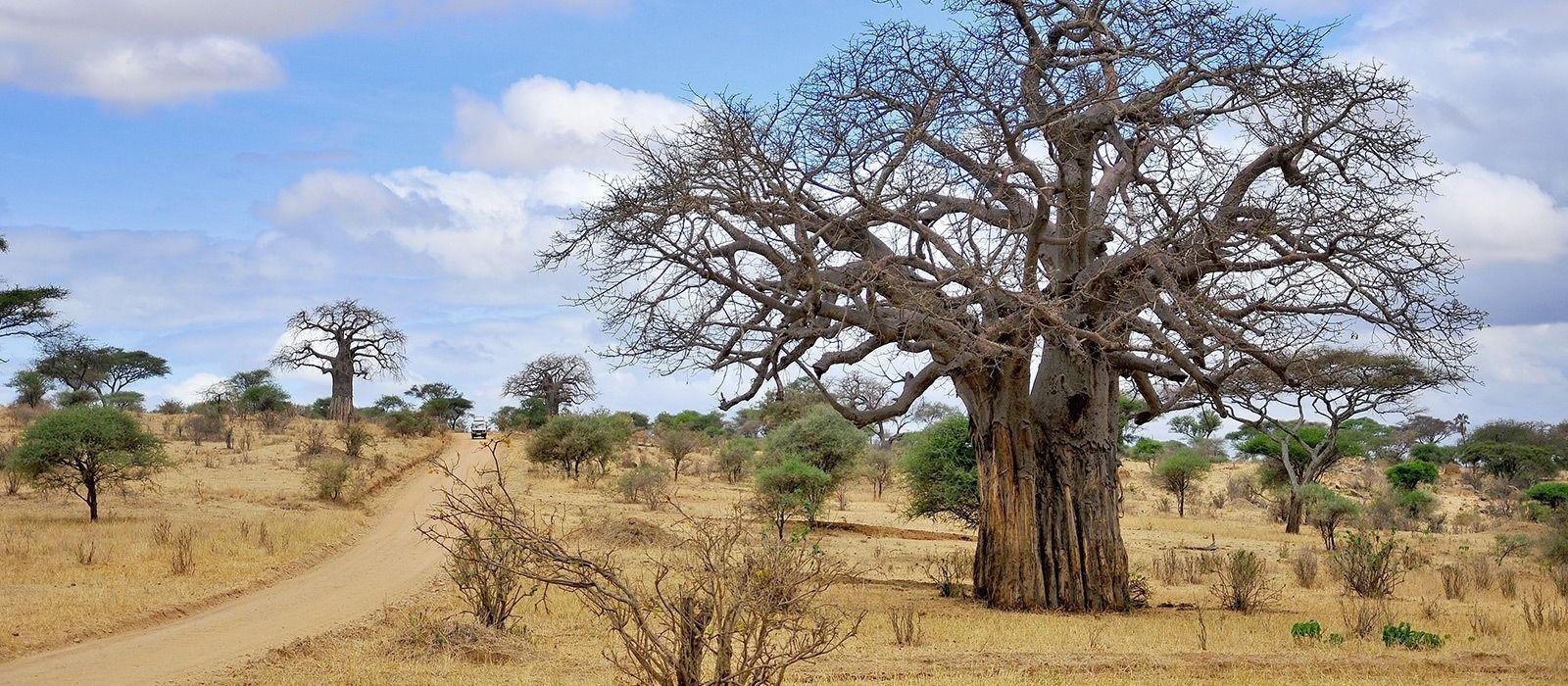 Destination Katavi Tanzania