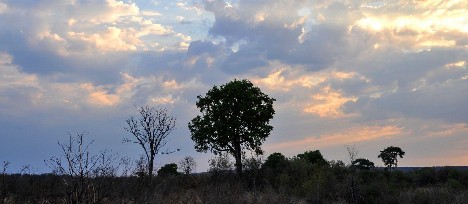 Timeless Zimbabwe Tour Trip 5