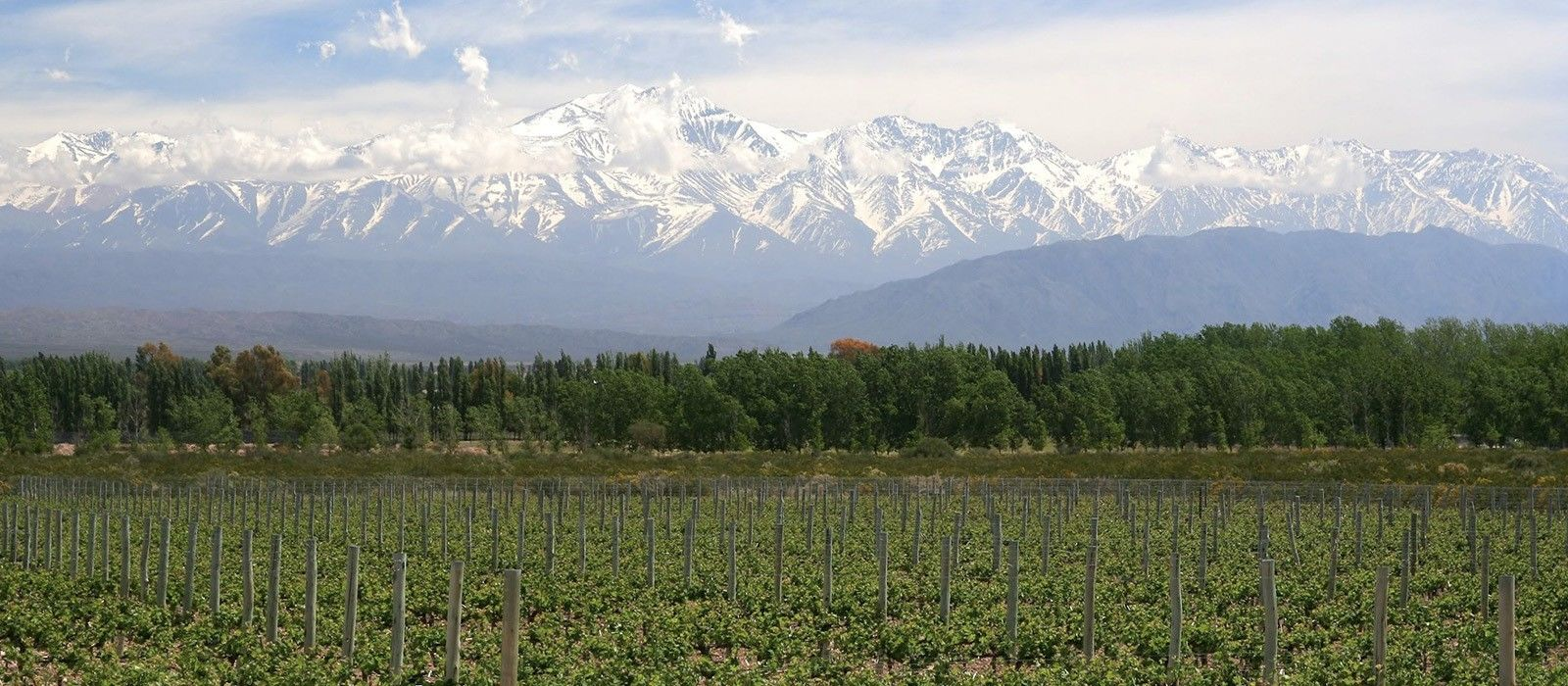 Argentina: Wine and Waterfalls Tour Trip 2