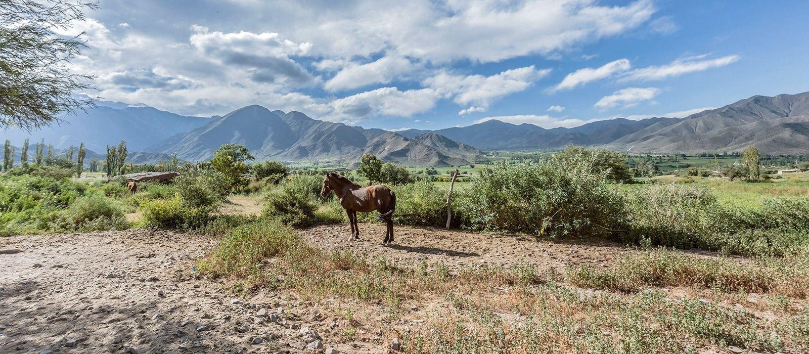 Argentinien: Die Schönheit des Nordens Urlaub 2