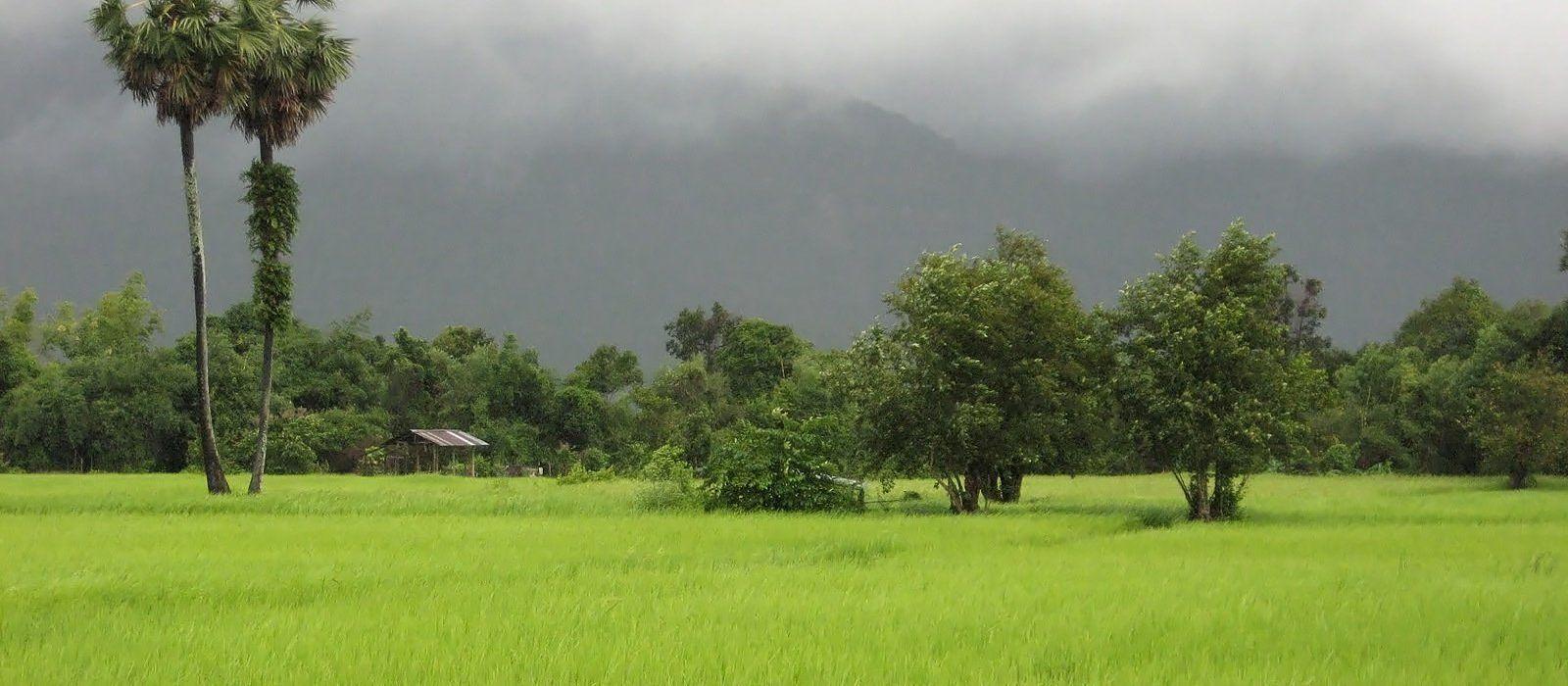 Reiseziel Xe Pian Nationalpark Laos