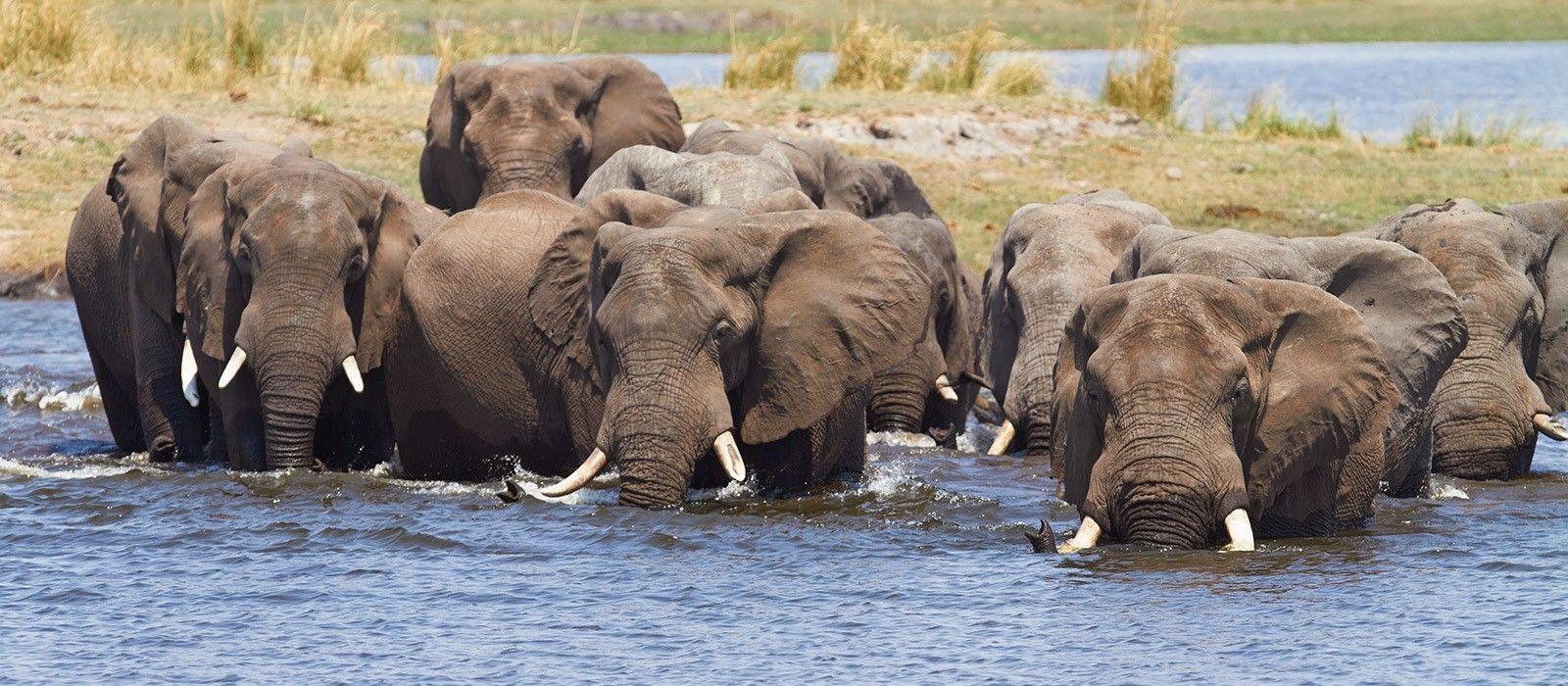 Victoria Falls & Botswana Highlights Tour Trip 2